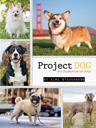 Project DOG by Kira Stackhouse Digital Edition Cover
