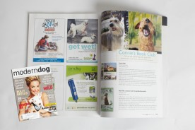 Project DOG by Kira Stackhouse in Modern Dog Magazine
