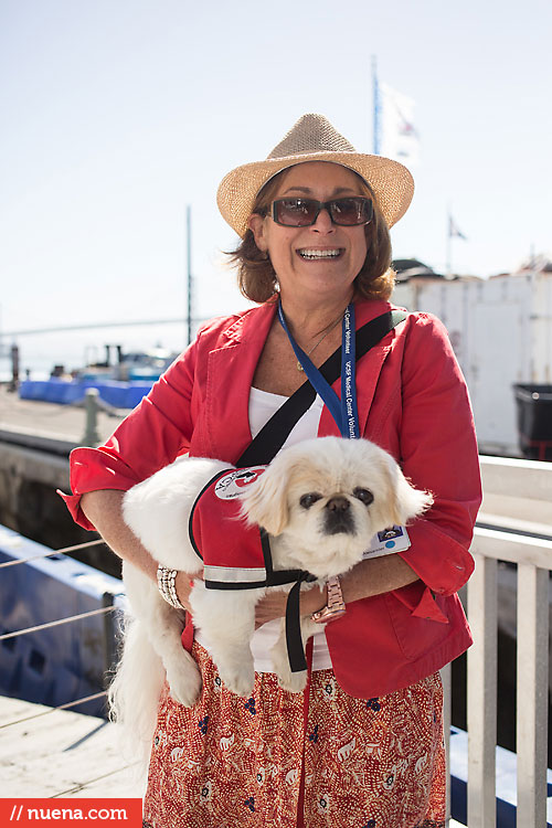 Dog Day on the Bay 2013 - San Francisco SPCA | Kira Stackhouse